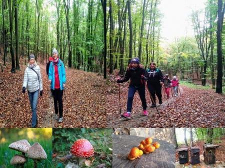 Aktywna sobota z Nordic Walking