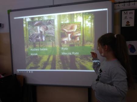Prezentacje multimedialne w klasie 2b